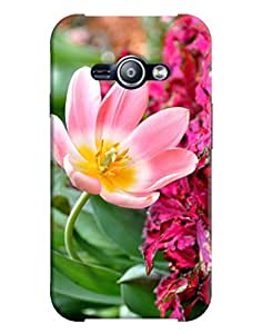 Samsung Galaxy J1 ACE Back Cover By FurnishFantasy