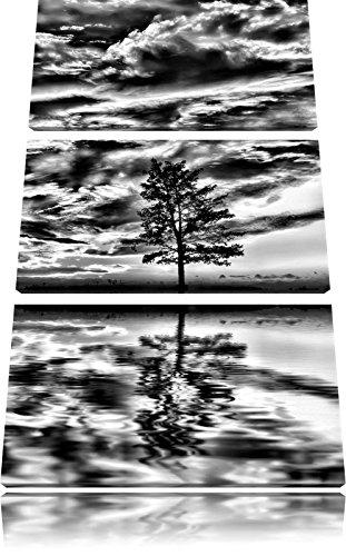 Pixxprint Monocrome, Insel im Meer Baum Sonnenaufgang Steine 3-Teiler Leinwandbild 120x80 Bild auf Leinwand -