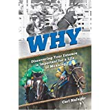 Why: Discovering Your Essence Is Important for a Life of Meaning (English Edition)