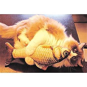Lalang Jouets pour Chat Coussin en Forme de Poisson Catnip Jouet de Jeu pour Chat