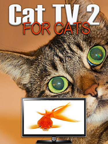 Cat TV 2 - For Cats