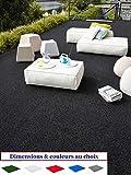 MadeInNature Tapis spécial Salon de Jardin/Tapis extérieur intérieur/Tapis Terrasses Balcons/Dimensions Coloris au Choix (Noir, 1x2m)