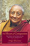 The Heart of Compassion: The Thirty-seven Verses on the Practice of a Bodhisattva: A Commentary on the Thirty-Seven-Fold Practice of a Bodhisattva