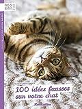 100 Idees Fausses Sur Votre Chat