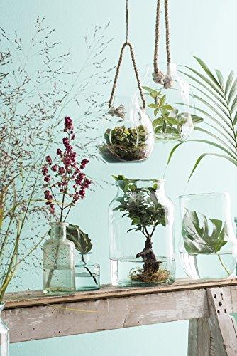 MICA Decorations Vienne Vase, Glas, transparent, H 35 cm D 21 cm