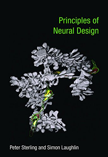 Principles of Neural Design (Mit Press)