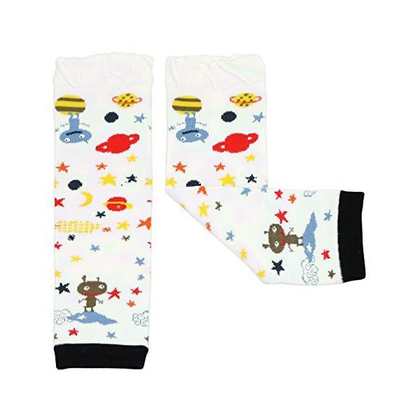 Dotty Fish multipack niño y niño todoterreno. Niñas y niños. Packs de 3 con diseños divertidos y coloridos 2