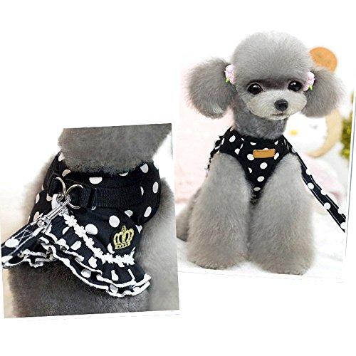 eizur Dog Pet Weste Geschirr + Leine Sicherheit Walking Training Kleidung verhindern Unfälle Weich Polka Dot Krone Rock 4Größen S/M/L/XL 2cm rose A0164/schwarz + weiß -