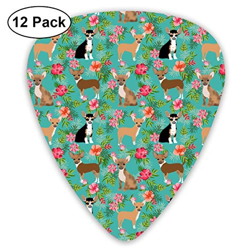 Chihuahua Hawaiian Floral Dog Breed Green_1144 Classic Celluloid Picks, 12-Pack, For Electric Guitar, Acoustic Guitar, Mandolin, And Bass -