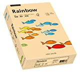 Papyrus 88042505 Drucker-/Kopierpapier bunt, Bastelpapier: Rainbow 160 g/m², A4, 250 Blatt, Matt, Farbe - Lachs