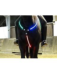 Rutis horse front light collier à lED rechargeable par uSB