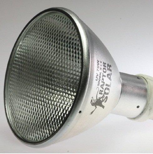 Hid-lampe Reflektor (Econlux SolarRaptor 50W PAR30 HID-Flood-Strahler)
