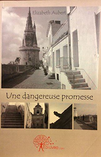 Une dangereuse promesse (French Edition)