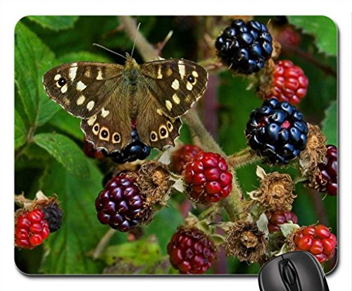 Butterflies and berries. Mouse Pad, Mousepad (Butterflies Mouse Pad) (Butterfly Berry)