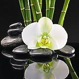 Eurographics DG-UWE2243 Black Orchid reflection II 20x20 Glasbild, Glas, Bunt, 20 x 20 x 1.7 cm