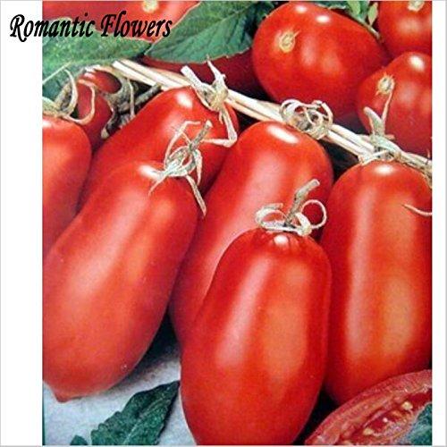 60pcs / Bag, Red Banana Tomatensamen, Gemüsesamen Rare Super-Sweet Home Gemüse