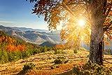 azutura Berg Sonnenaufgang Fototapete Herbst Wald Tapete Wohnzimmer Haus Dekor Erhältlich in 8 Größen Mittel Digital