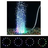 Aquarium Lightings