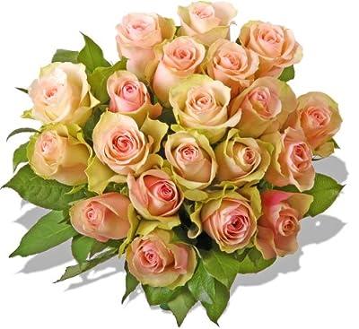 """Blumenstrauß Blumenversand Rosen Rosenstrauß""""La Belle"""" +Gratis Grußkarte+Wunschtermin+Frischhaltemittel+Geschenkverpackung"""