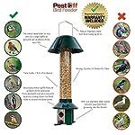 Squirrel Proof Wild Bird Feeder - Roamwild PestOff (Mixed Seed / Sunflower Heart Feeder) 15