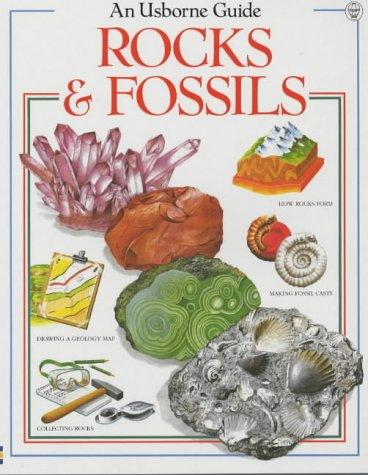 Rocks and Fossils (Usborne Nature Trail)