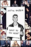 Justin Bieber - What do you Mean II