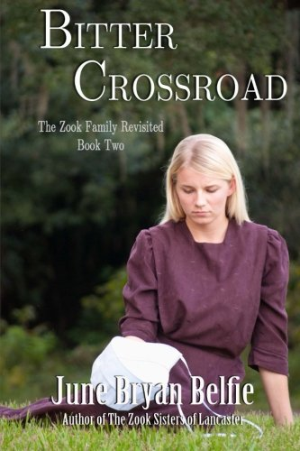 Bitter Crossroad The Zook Family Revisited Volume 2