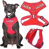 Vorsicht (nicht Ansatz) rot Farbe Kodiert non-pull Vorder- und Rückseite D-Ring gepolstert und wasserdicht Weste Hundegeschirr verhindert Unfälle durch vorwarnen anderer Hunde in Advance (Medium Hals bis zu 40 cm Brust 48-72cm)