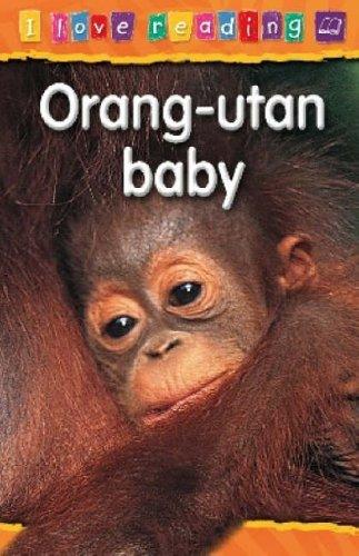 Orang-utan Baby: Purple Reading Level (I Love Reading)