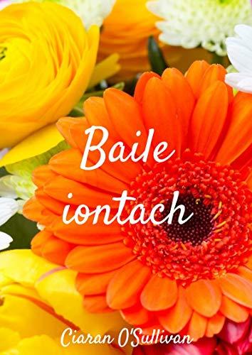 Baile iontach (Irish Edition)