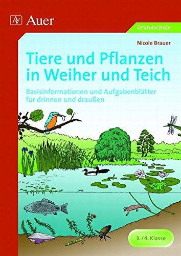 tiere-und-pflanzen-in-weiher-und-teich-basisinformationen-und-aufgabenblatter-fur-drinnen-und-drauss