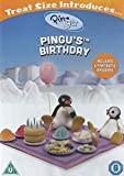 Pingus Birthday
