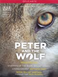 Prokofjew: Peter and the Wolf [DVD]