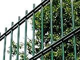 Doppelstabmattenzaun | Gartenzaun | Komplettset | 103cm hoch | verzinkt und pulverbeschichtet (25m, Grün (RAL 6005))