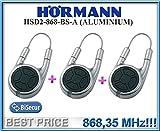 3x Hörmann HSD2–868-bs-a Aluminium Fernbedienungen, 868,3MHz BiSecur Sender 2-Kanal. Top Qualität Original Fernbedienung HORMANN für das Beste Preis. 3Stück.