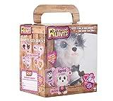 kd kids, Rescue Runts Husky Plüsch, S18052, Mehrfarbig