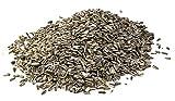 mgc24® Vogelfutter für Wildvögel | Sonnenblumenkerne gestreift 10kg