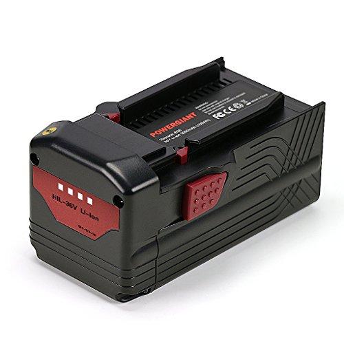 powergiant alta capacita batteria
