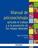 Manual de Psicosociología aplicada al trabajo y a la prevención de los riesgos laborales (Psicología)