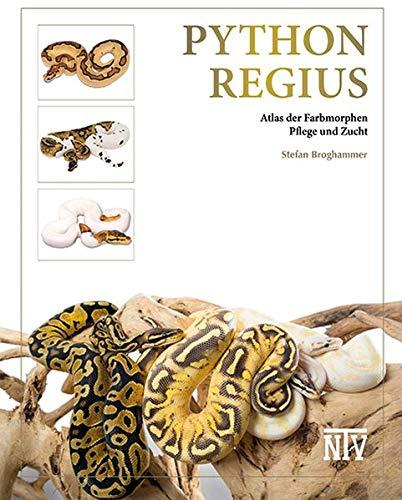 Python regius: Atlas der Farbmorphen -