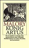 Die Geschichten von König Artus und den Rittern seiner Tafelrunde (insel taschenbuch)