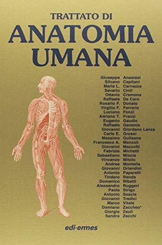 Zoom IMG-1 anatomia umana trattato vol 1