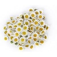 100Pcs Margaritas Flores Artificiales, Elegantes Flores Gerbera de Seda Mini DIY Artesanía para Casa Boda Jardín Decoración, Blanco