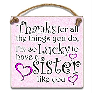 HmHome Sister Gift Thanks for all the things you do i'm so lucky to have a sister like you bottle tag
