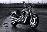 Love st - Harley Davidson Chopper Bike Poster - Poster for Home and Office