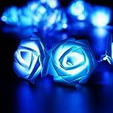Cadeaux Fleurs Et Alimentation Best Deals - ILOVEDIY 2.5 Mètres 20-LED Guirlande Lumineuse Forme de Fleurs Rose (bleu)
