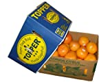 Florida Grapefruit (StarRuby) Super Dark Red, Original-Karton 16kg
