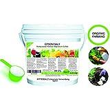 Abono Ecológico Sales de Epsom (sulfato de Magnesio) FERTILIZANTE DE MAGNESIO HUERTA 2.5 kg