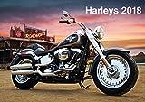 Harleys 2018 - Fred McMann
