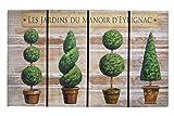 Matte - Schmutzfangmatte / Fußmatte / Fussmatte / Fußabstreifer / Fußabtreter / Schmutzmatte Modell Wood - Bäume - witzig lustig 3D 3 D Optik Größe ca. 45 x 75 cm / Ecomat-Fußmatte / sehr hochwertige Fußmatte